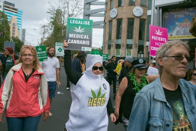 Weed Walk-16